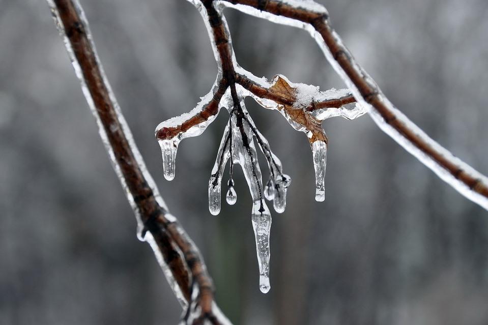 МЧС предупредило о предстоящих заморозках в Дагестане