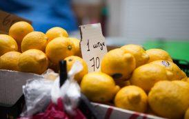 Рынок и цены эпохи самоизоляции