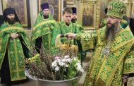 «Трудно достучаться». В Дагестане люди пришли в храмы в Вербное воскресенье вопреки призыву патриарха