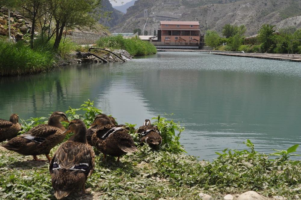 В Казбековском районе Дагестана закрыт доступ ко всем туристическим объектам