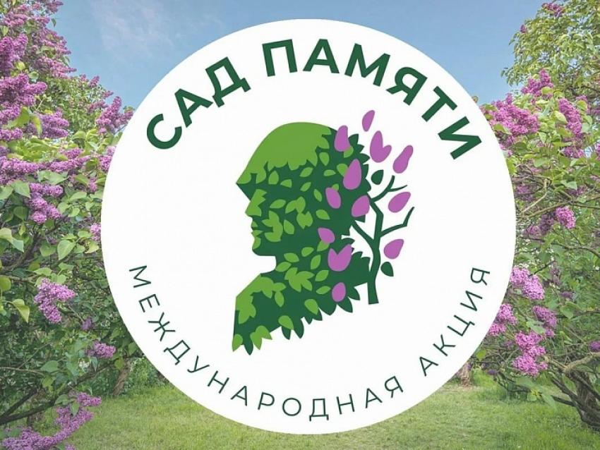 Дагестан запустил международню акцию «Сад памяти»
