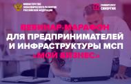Состоялся вебинар-марафон «Мой бизнес»