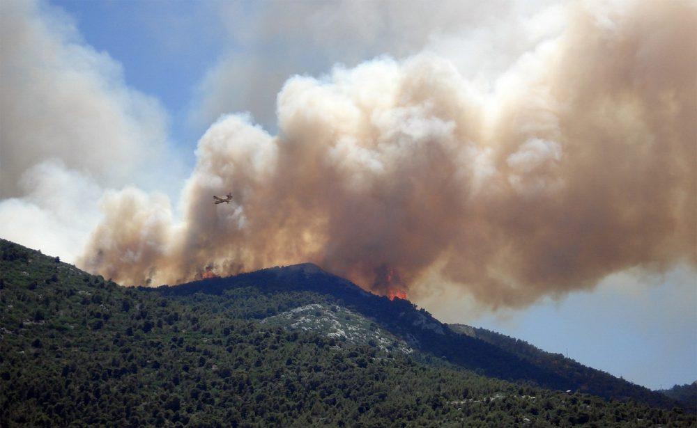 В четырех районах Дагестана установлен высший класс пожароопасности