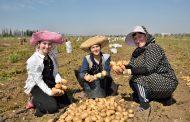 Предприятие «Агропрайм» организует сельскохозяйственный потребительский кооператив
