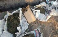 В Дербенте задержана группа наркоторговцев