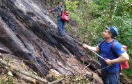 Лесной пожар в Казбековском районе ликвидирован