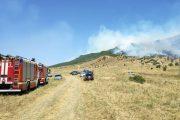 Проблемой пожаров в лесах Дагестана пришлось оперативно заняться правительству