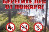 Берегите лес! Соблюдайте меры пожарной безопасности при нахождении в лесу