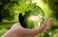 Дни экологического просвещения пройдут в прямом эфире