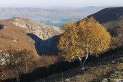 Гидрометцентр: теплая погода продержится в Дагестане до 8 ноября