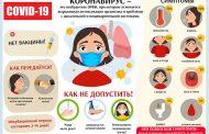 О профилактие коронавируса