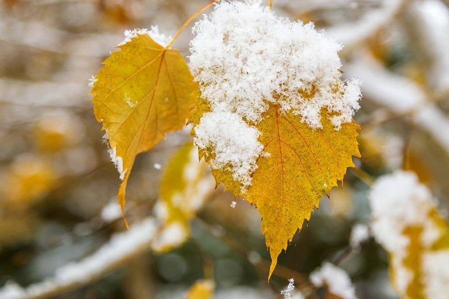 Прогноз погоды в декабре: когда ждать первый снег на побережье Каспия