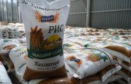 В 2020 году в Дагестане по нацпроекту построили более 880 гектаров рисовых чеков