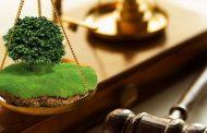 Эксперты прокомментировали решение о создании в Дагестане комиссии по земельным вопросам