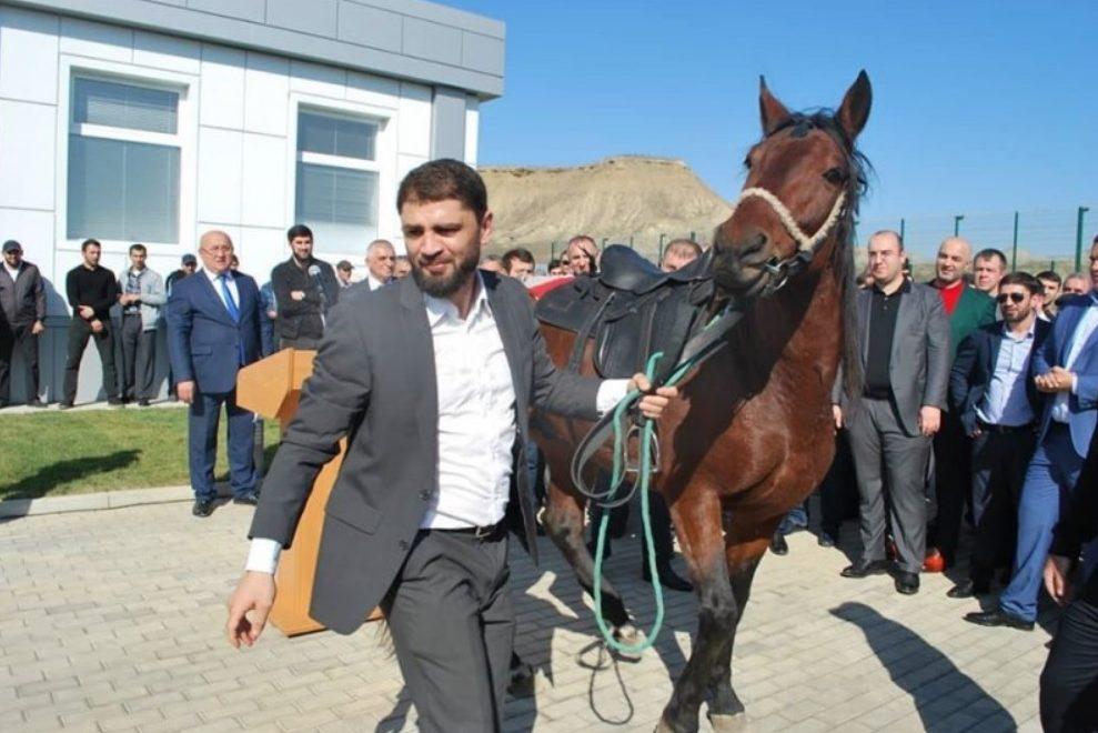 Хабиб Аллахвердиев возглавил Федерацию бокса Дагестана