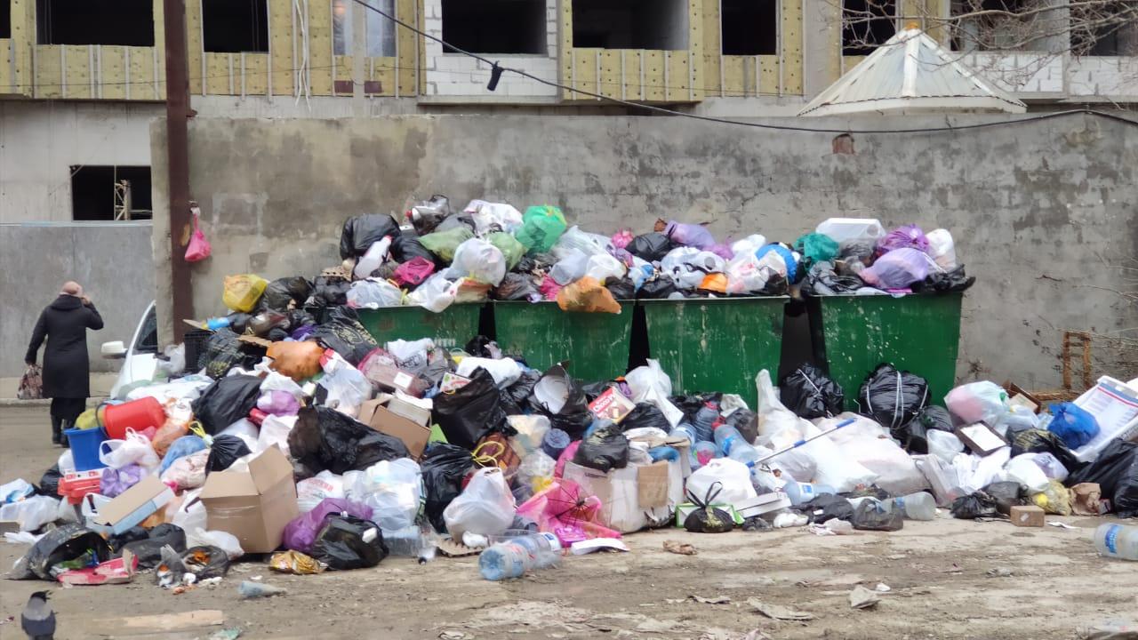 Вывоз мусора – социальный бизнес