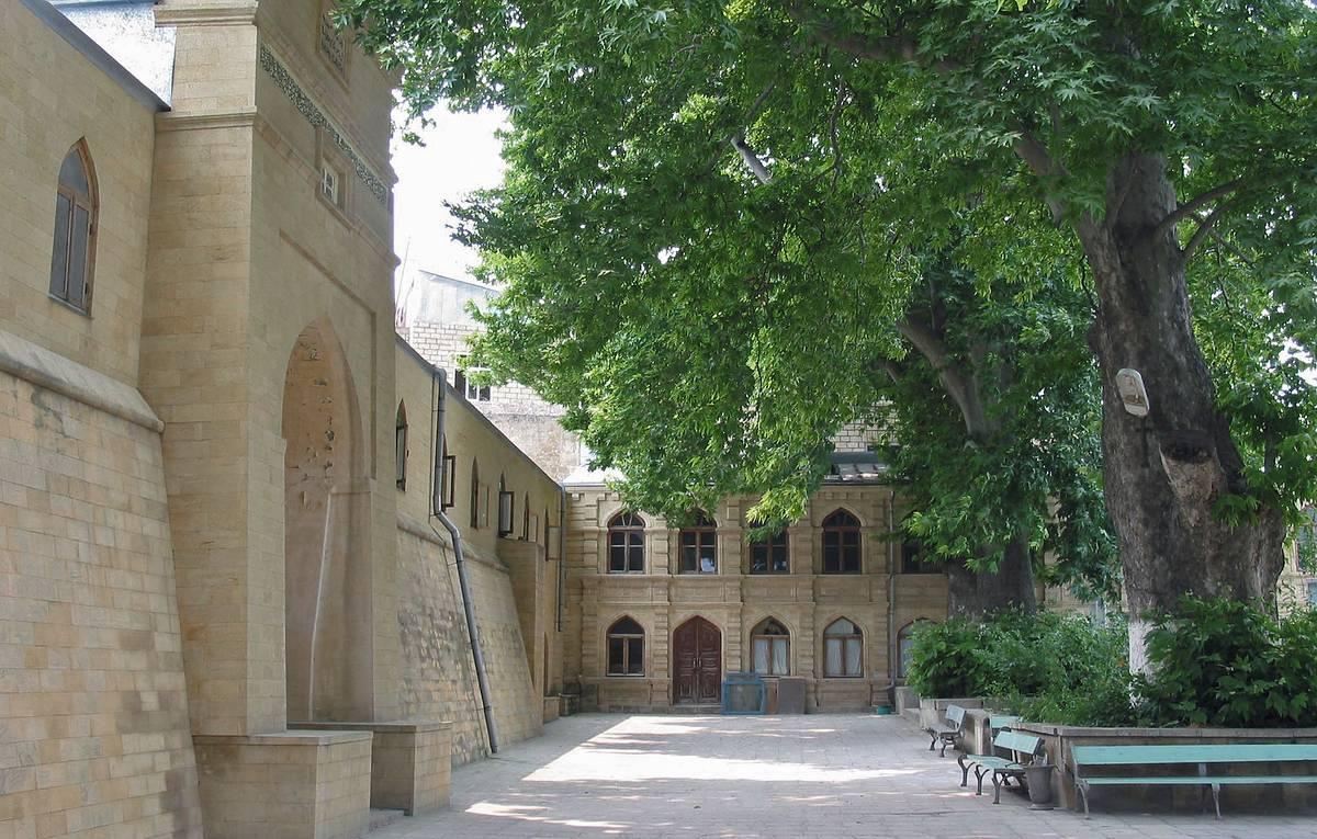 Дербентский платан - на первой строчке в голосовании конкурса «Европейское дерево года 2021»