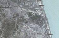 На побережье Каспия в Дагестане обнаружено около 40 мертвых кудрявых пеликанов