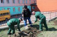 В Казбековском районе началась акция «Сад Памяти»