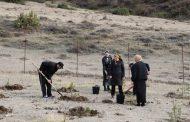 В Ботлихском районе продолжается весенняя поливная и лесопосадочная кампания