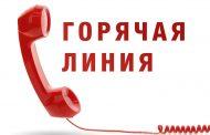 В Дагестане заработала горячая линия «Антиконтрафакт»