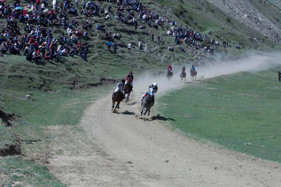 В Ботлихском районе прошли конные скачки