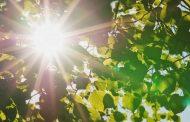 Прогноз погоды: жара придет в Дагестан в конце июня