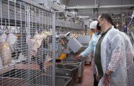 Сергей Меликов осмотрел птицефабрику «Батыр-Бройлер» в Хасавюртовском районе