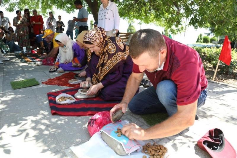 Конкурсы на самое быстрое разбивание абрикосовых косточек и на крупнейший абрикос прошли в Дагестане