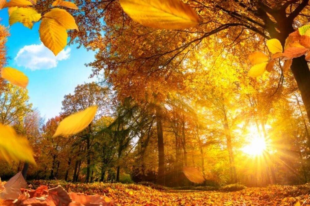Прогноз погоды: сентябрь в Дагестане станет четвертым месяцем лета