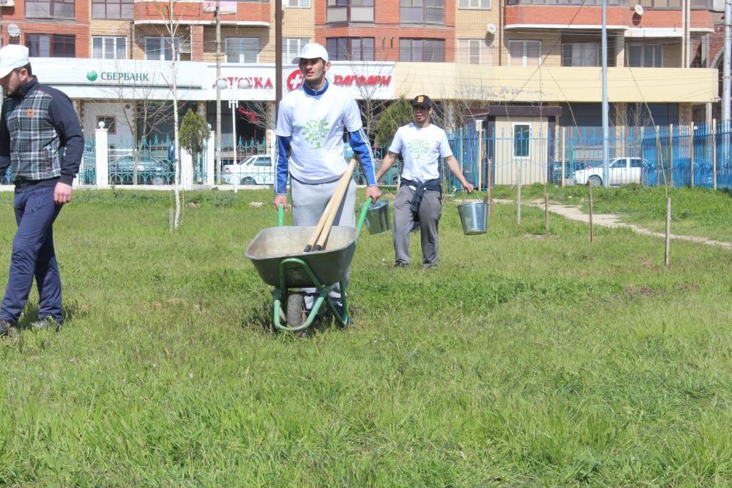 В Махачкале посадили 220 деревьев в рамках проекта «Дерево жизни».