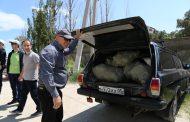 С пляжа в Редукторном поселке Махачкалы вывезли несколько мешков мусора