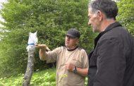 Полицейский-энтузиакст из Казбековского района привил несколько тысяч деревьев