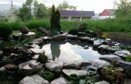 В Казбековском районе учительница в рекордные сроки соорудила декоративный водоем