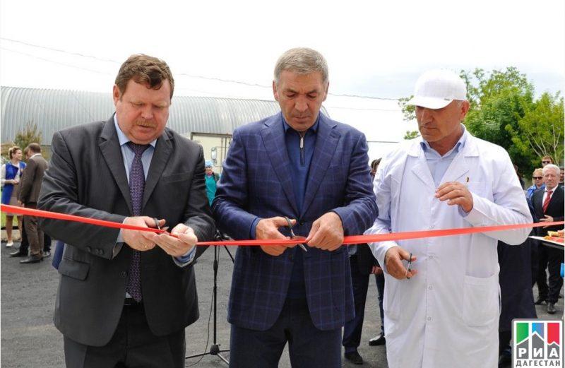 В Кизляре заработал молочный цех стоимостью 40 млн рублей