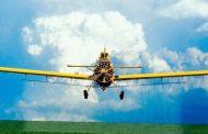 Малая авиация уничтожает саранчу в Дагестане