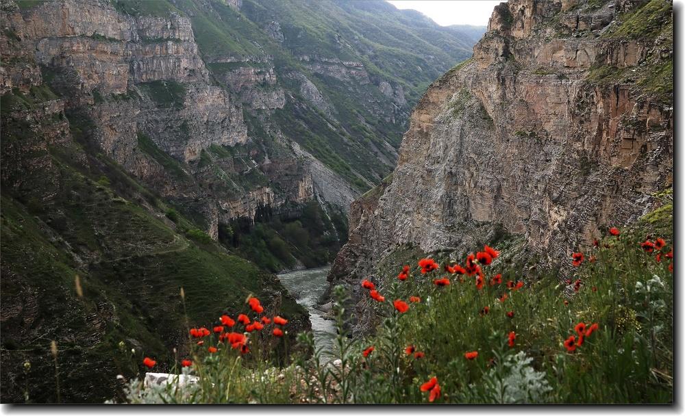 Краеведы Дагестана снимут документальный фильм о местных красотах
