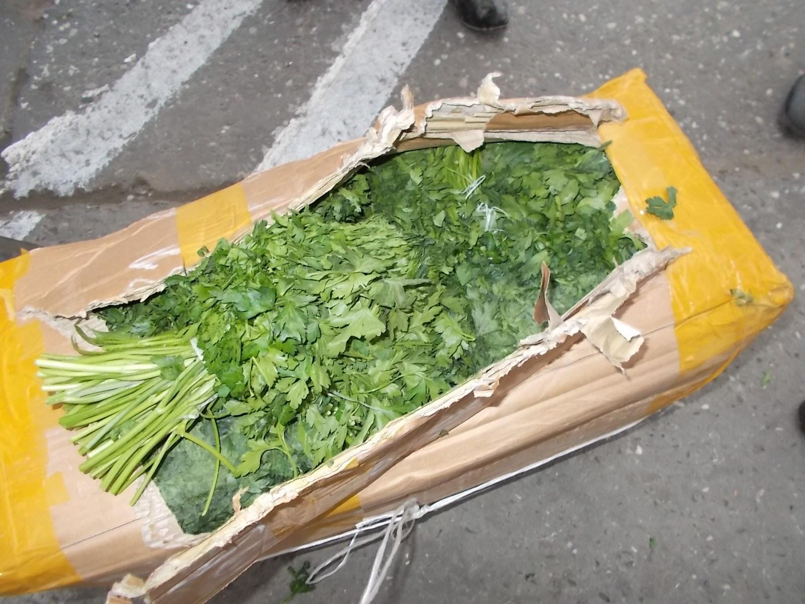 Сотрудники Россельхознадзора не допустили ввоз 30 тонн несертифицированной сельхозпродукции в Дагестан