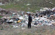 Специалисты Россельхознадзора высчитали суммарный экологический ущерб за 2017 год