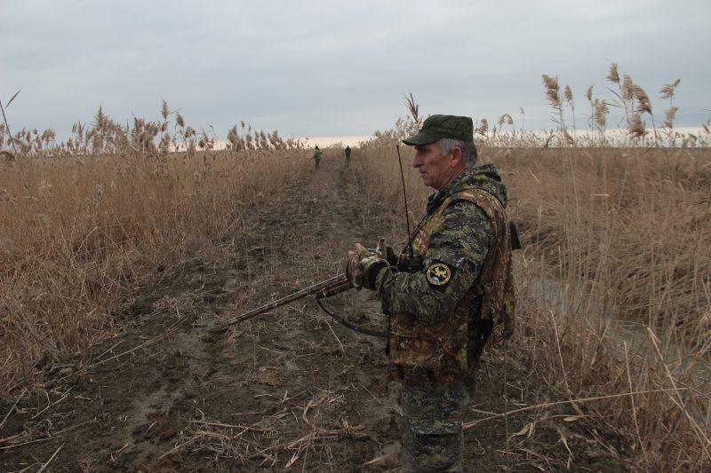 В Бабаюртовском районе проведен отстрел волков