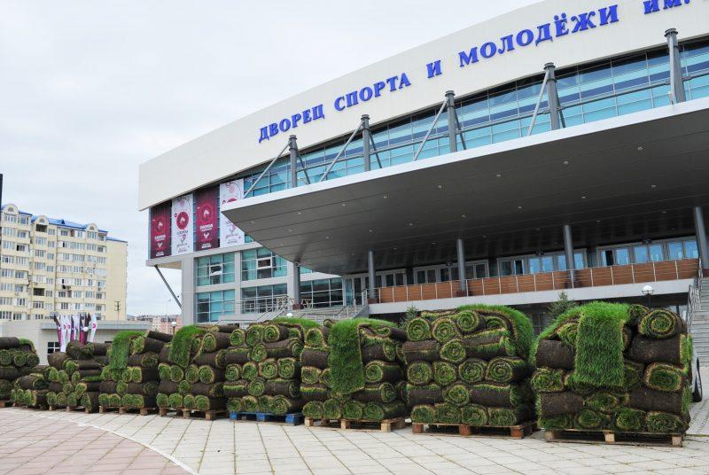 К борцовскому чемпионату завезли ростовскую травку