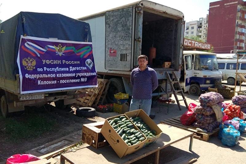 Колония-поселение №9 представила продукцию на сельхозярмарке в Кизилюрте
