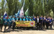 Дагестан присоединился к акции «Дерево Победы»