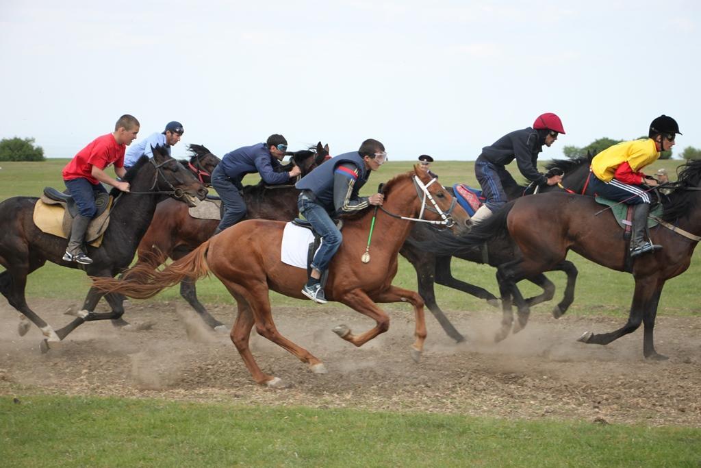 Республиканский конно-спортивный праздник пройдет в Казбековском районе